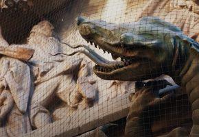 Der Kampf gegen Drachen - Filmausschnitt